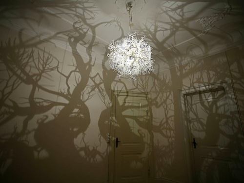 Tree-Shadow-Light-by-Hilden-and-Diaz-1